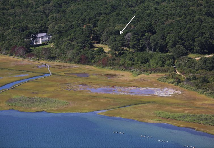 51 Ice Pond Lane Oak Bluffs  02557 - Photo 1
