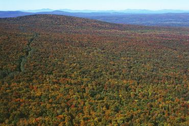 Photo of Northeast Kingdom, VT