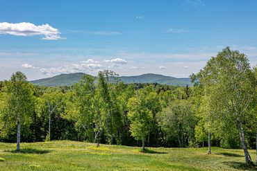Photo of Phelps Rd Bridgewater, VT 05091