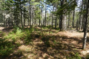 Photo of 383 Sound Dr Mt Desert, ME 04660