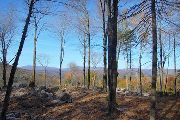 Photo of 0 Little Pond Rd Andover, VT 05143