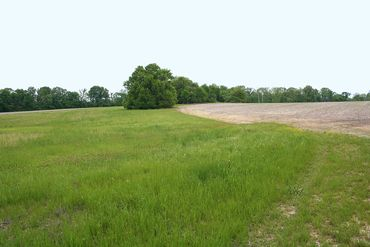 Photo of 0 US Highway 51 Panola County, MS 38666