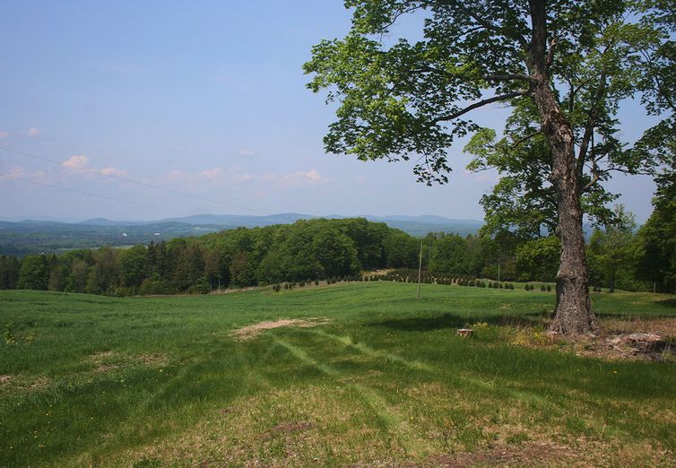 2501 Bayley-Hazen Road Walden VT 05873 - Photo 1