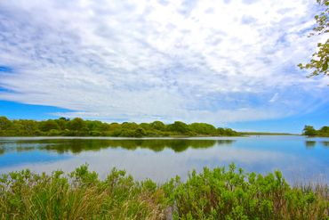 Martha's Vineyard Featured Home For Sale 30